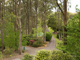 Mount Lofty Botanic Garden - Accommodation BNB