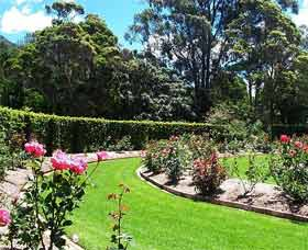 Wollongong Botanic Garden - Accommodation BNB