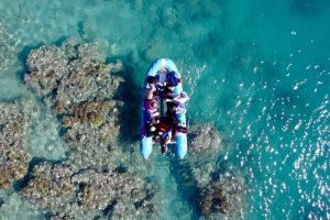 Glass-bottom boat tour with Whitehaven Beach - Accommodation BNB