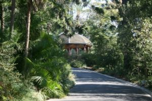 Royal Botanic Gardens Victoria - Accommodation BNB